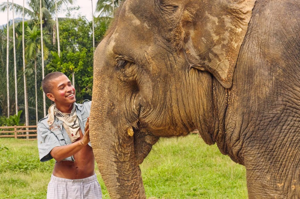 Spending time with Thailand's elephants
