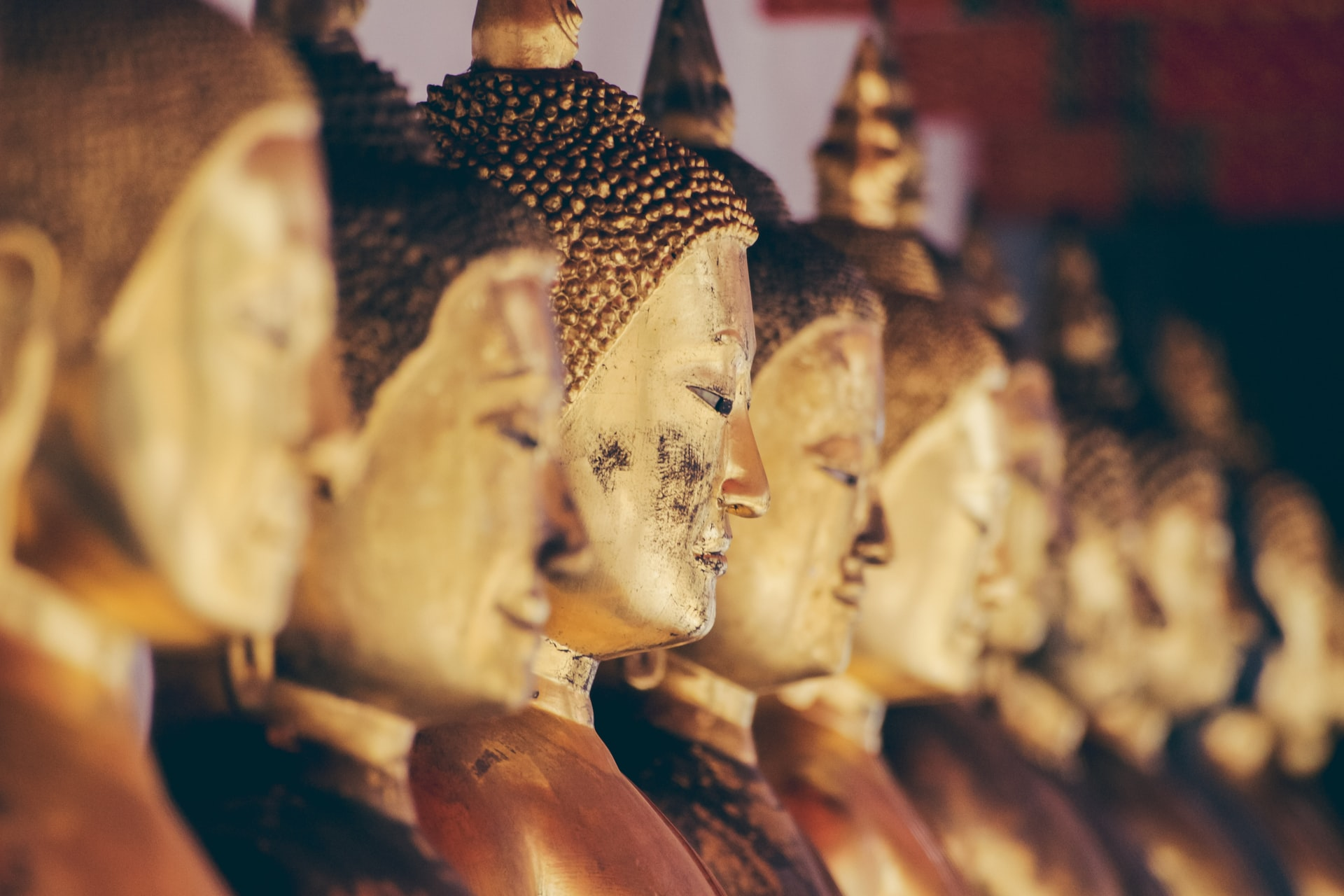 Golden Buddha statues at a temple in Bangkok, Thailand