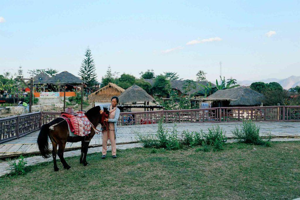 A Thai woman readies a horse for a ride around the countryside, Thailand